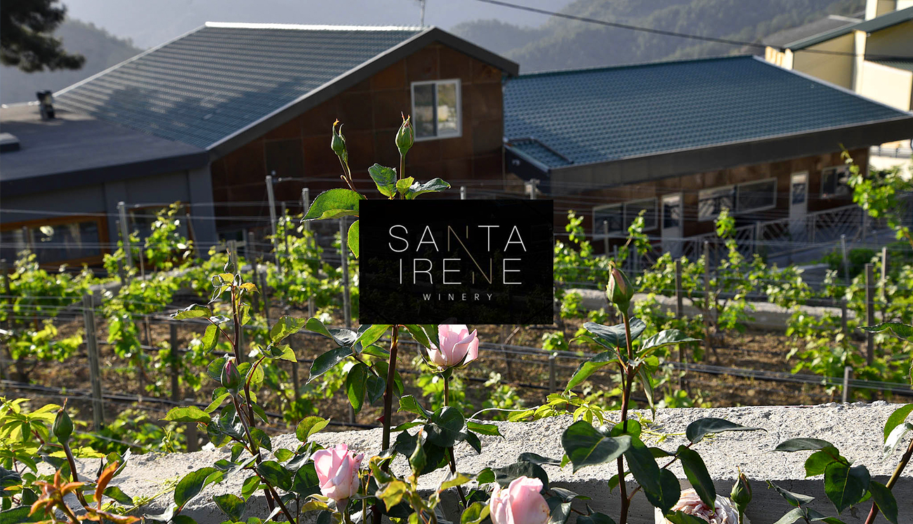 9. Santa Irene Winery