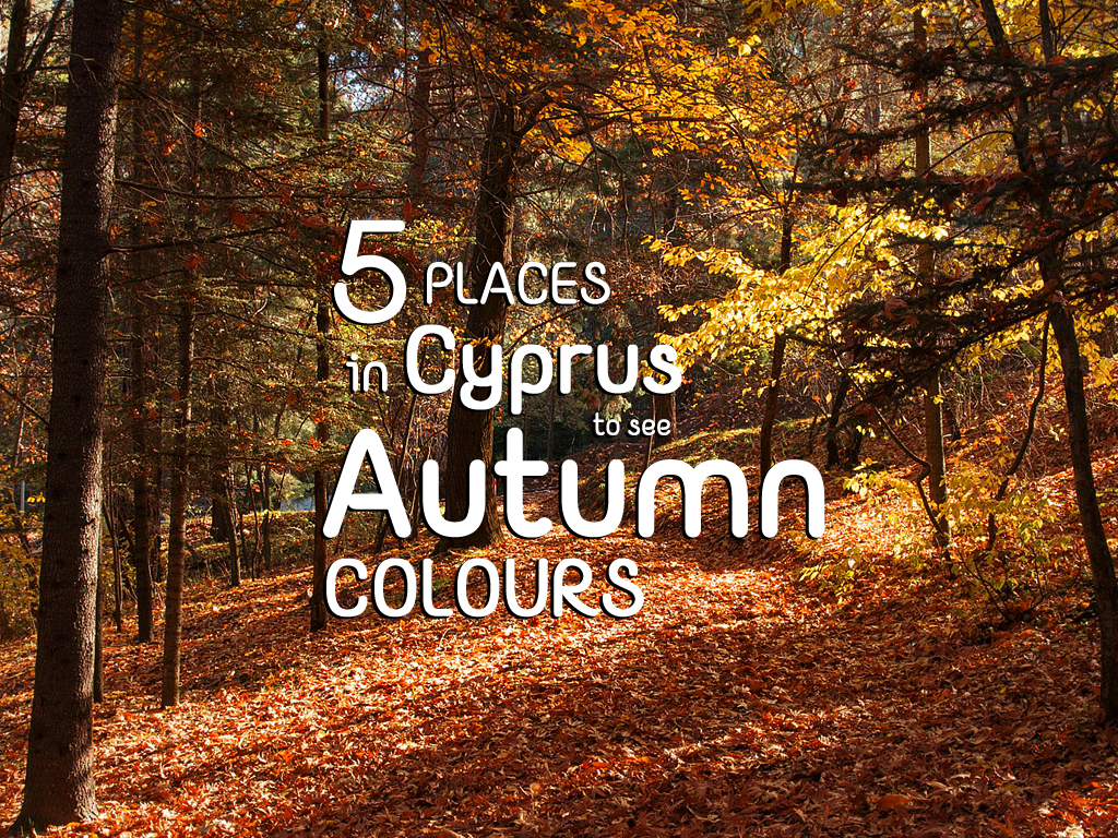 5 Places in Cyprus to see Autumn colours