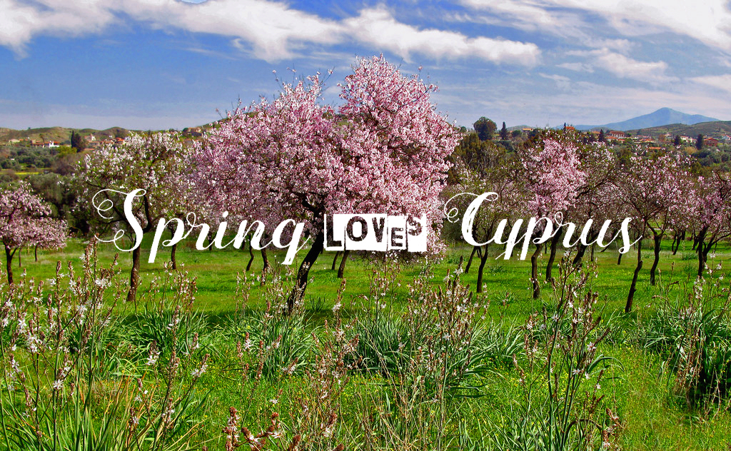 Spring Loves Chypre