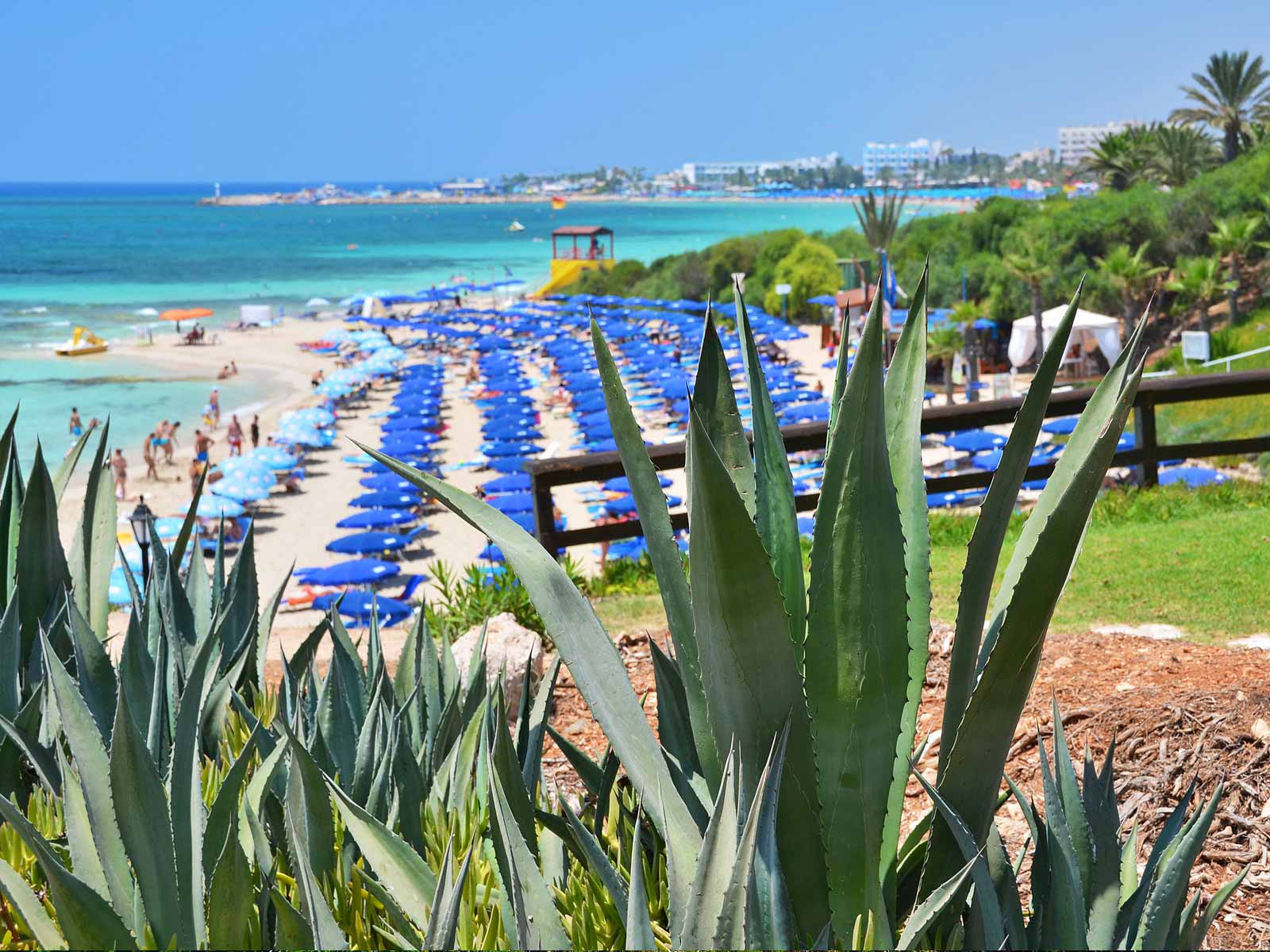 Ayia Napa Beaches